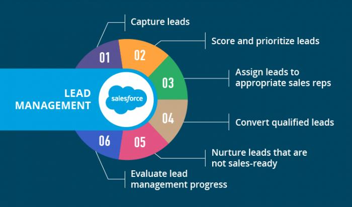 Lead Management Salesforce
