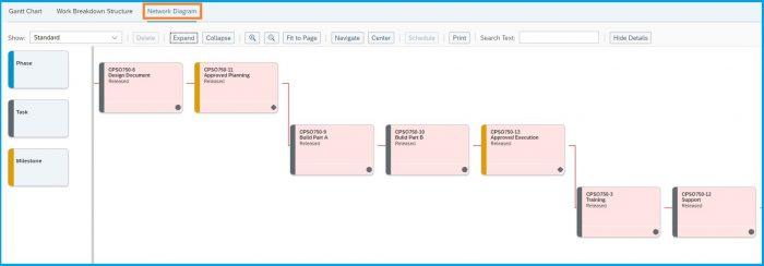 SAP-Bydesign-Project-Management-network