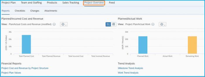 SAP-Bydesign-Project-Management-report