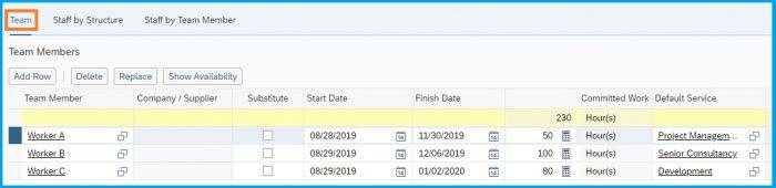 SAP-Bydesign-Project-Management-team