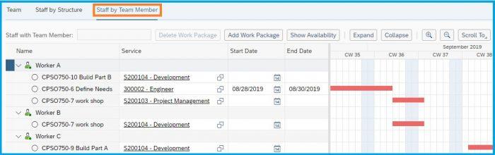 SAP-Bydesign-Project-Management-team-staf-by-worker